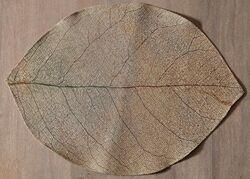 LEAFY DIJITAL SUPLA 35x50cm - Thumbnail